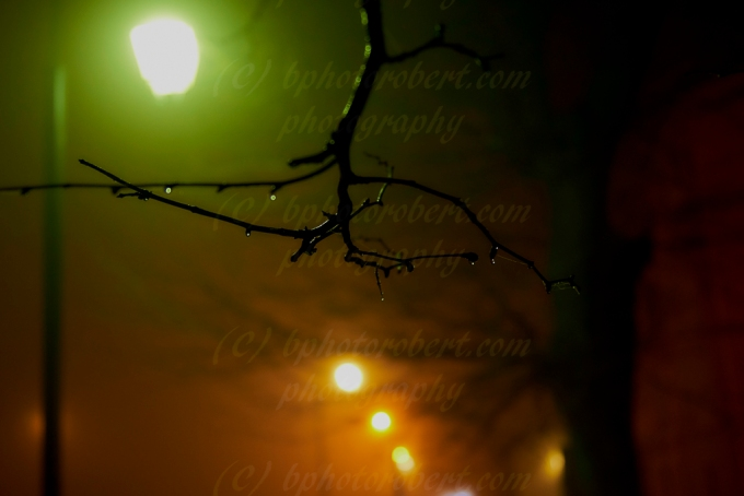 The Lights in theFog…