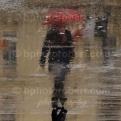 The Rainy Reflections